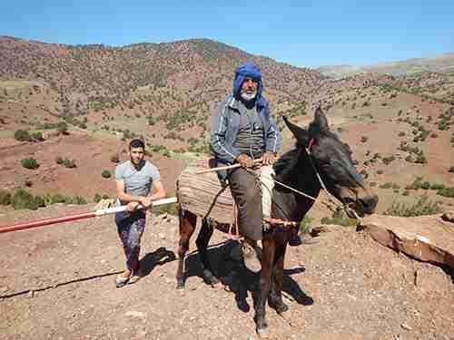 berbere blue on horseback